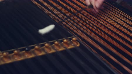 hammered : Folk musical instrument. Male hand hold stick and hit strings cimbalom. String instruments background. Cimbalom music playing. Music player playing cimbalom music. Hammered dulcimer playing