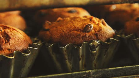 crust : Sweet cupcake in oven. Muffin baking process. Bakery production at food factory. Cupcake baking process. Cupcake bakery production at food factory. Fresh bakery manufacturing. Sweet food industry Stock Footage