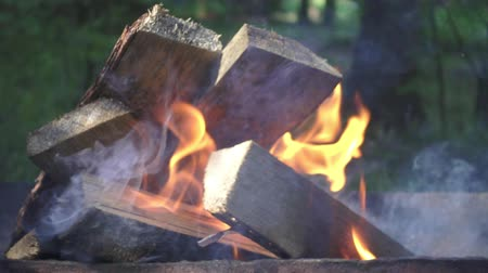 Burning firewood on camping fire outdoor slow motion. Close up firewood in flame bonfire for cooking barbeque food during rest on summer holiday on nature