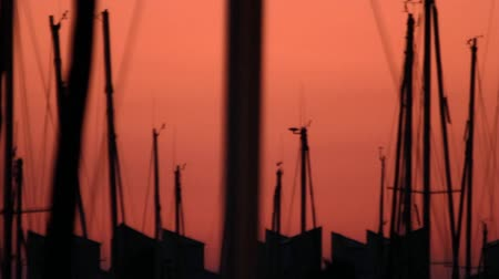 Evening landscape yacht silhouette standing in sea port. Boat mast parked in yacht harbor. Scenic view yacht port on sunset background Wideo