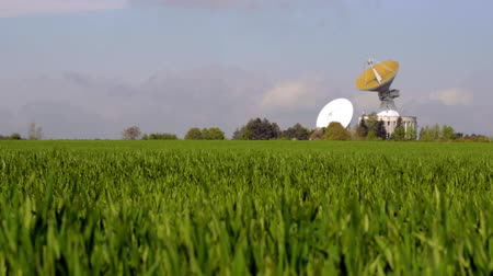 detection : Radio telescope stands on green lawn, light wind shakes grass. Giant radar for space communications on wide field. Radio telescope antennas on grass field