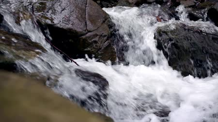 karpaty : Water stream flow among stones. Clear water quickly fall downhill flowing around dark wet stones. Close-up of waterfall pouring down black rocks. Beautiful mountain waterfall background Dostupné videozáznamy