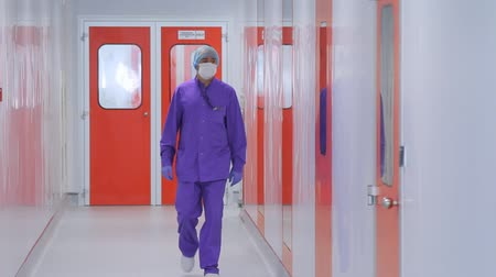 lab employee : Pharmaceutical factory worker go in sterile corridor. Steadycam shot of scientist in uniform walking laboratory corridor. Doctor in face mask moving in hospital corridor Stock Footage