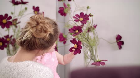 camomila : Adorable baby touching flowers at home. Infant child on mother hands touch violet chamomile flower. Little kid eating beautiful flowers in vase. Child exploring world. Stylish mother holding baby
