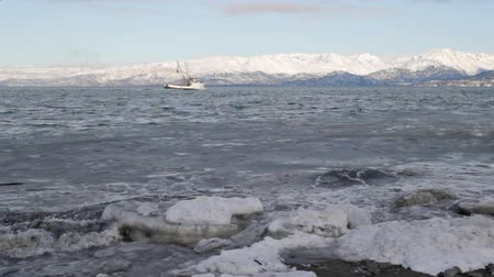 рыболовство : Fishing boat in the Kachemak bay in winter with an icy beach in the foreground Стоковые видеозаписи