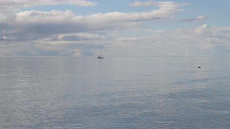 alasca : Sailboat in the Kachemak Bay, Alaska in summer with clouds.