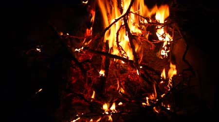 gałązki : Hot campfire burning with twigs from the forest