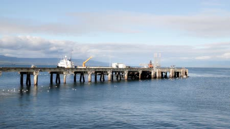 atracação : Loader moving large metal sections on the commercial shipping dock in Homer Alaska on a sunny day. Stock Footage