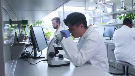 medical student : Scientist working in lab. Doctors making medical research. Laboratory tools: microscope, test tubes, equipment. Biotechnology, chemistry, science, experiments and healthcare concept. Stock Footage
