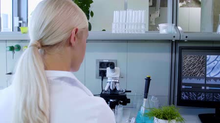 vaccino : Female scientist working in modern lab. Doctor making microbiology research. Biotechnology, chemistry, bacteriology, virology, dna and health care concept.