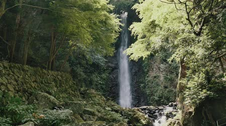 vodopád : Scenery of the Yoro falls in Gifu, Japan