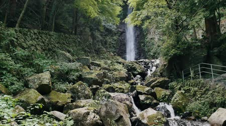 ion : Scenery of the Yoro falls in Gifu, Japan