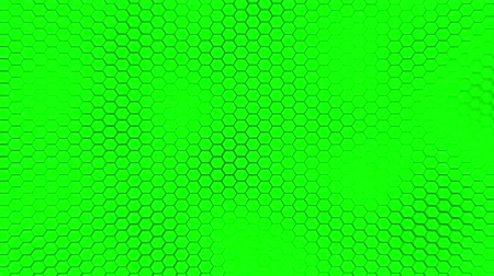alchemy : Beautiful green hexagrid background with slow waves motion. Loop Stock Footage