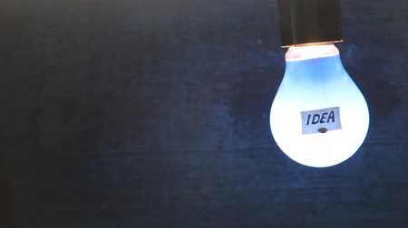 bulbo : light bulb with an inscription on the label idea