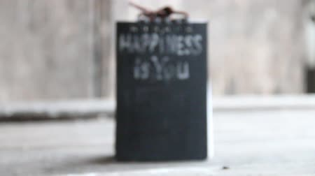 boldogság : Happiness is you. Inscription in chalk on the black plate. Stock mozgókép