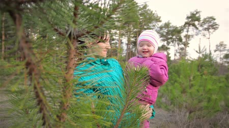 annelik : Little girl for first time in her life touches pine spines and admires. Mother and daughter walking in autumn forest Stok Video