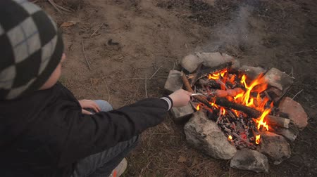 fry : Boy brings sausages on skewer to fire. Family picnic in pine forest