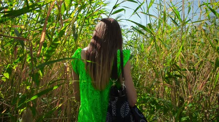 çekicilik : Young woman with bag on her shoulder makes her way through thickets of reeds
