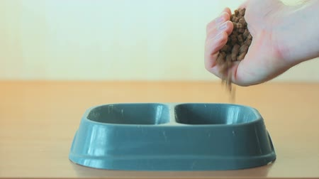 feeder : Mans hand pours dry cat food into feeding trough for feeding pet Stock Footage