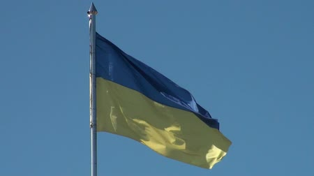 Украина : flag State of Ukraine