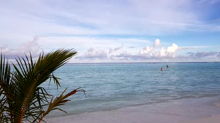 time laps : Gorgeous colorful tropical landscape. Maldives, Indian Ocean.White sand beach. Turquoise water, blue sky with snow white clouds. Green trees. Time lapse.