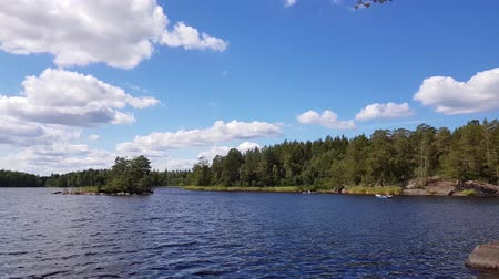 Švédsko : Beautiful view on lake on summer day. Dark blue lake water surface, green tall trees and blue sky with white clouds. Sweden, Europe.