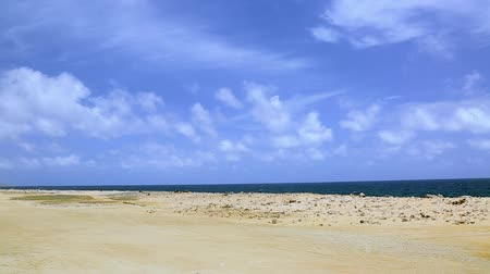 north bay : Natural beauty of Aruba. North coast. Off-road Aruba. Amazing stone desert landscape, blue sea and blue sky.