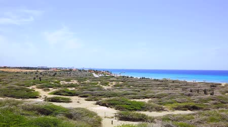 off shore : Natural beauty of Aruba. North coast. Off-road Aruba. Amazing stone desert landscape, blue sea and blue sky.