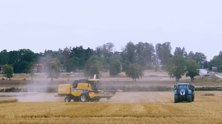 трактор : Short film showing process of harvesting rye by agricultural machinery. Agriculture concept backgrounds. Uppsala. Sweden 17082019