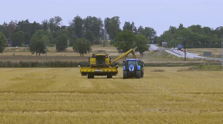 çiftçi : Short film showing process of harvesting rye by agricultural machinery. Agriculture concept background. Sweden