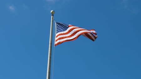 usa independence day : Beautiful view of American flag on green trees and blue sky with white clouds background.