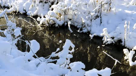 morass : Gorgeous view of winter nature landscape .. Stream in winter forest. Beautiful nature landscape. Trees reflection on water. Winter time in Sweden.