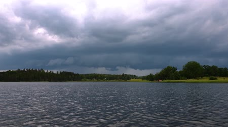 рыболовство : Slow motion. Gorgeous view of nature landscape. High trees on lake coast. Thunder sky with gray clouds background. Cloudy summer day on nature.