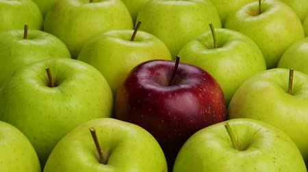metaphors : Red Apple In Green Apples. Many apples at table. Healthy diet Stock Footage