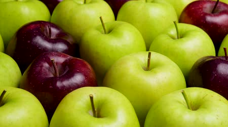 bad ecology : Red Apple In Green Apples. Many apples at table. Healthy diet Stock Footage