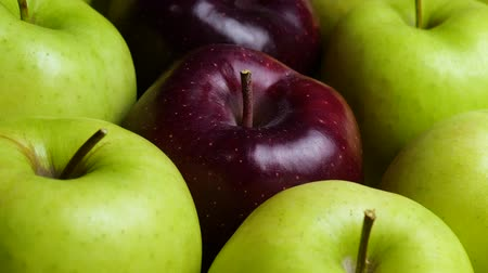 metaphore : Red Apple In Green Apples. Many apples at table. Healthy diet Vidéos Libres De Droits