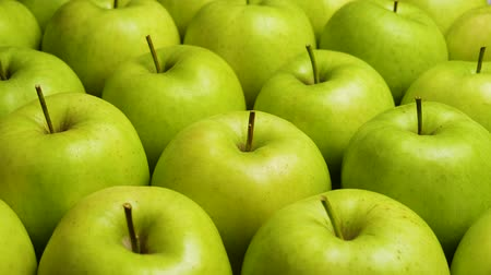 lots of : Red Apple In Green Apples. Many apples at table. Healthy diet Stock Footage
