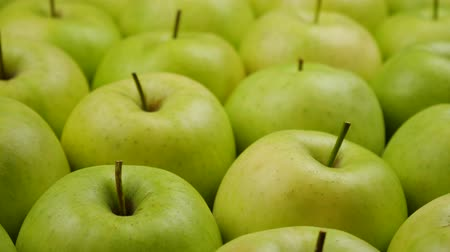 lots of : Fresh nature apples background. Natural Apple harvest from tree. Grocery store, department of fruits and vegetables. Stock Footage