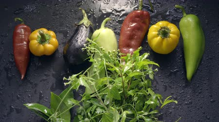 veggie : Vegetables, eggplant and pepper in drops of water. Man lays fresh green grass Stock Footage