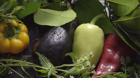ピーマン : Vegetables, eggplants and peppers on a dark surface in drops of water in natural light