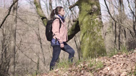 Girl traveler with a backpack travels in the forest Stockvideo