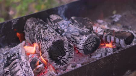 Close-up Burning logs and coals in a barbecue