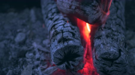 chamejante : Close-up Burning logs and coals in a barbecue