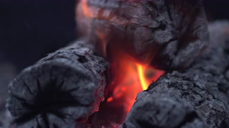 combustão : Close-up Burning logs and coals in a barbecue