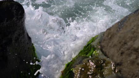 Close-up, Surf, Stones on the seashore overgrown with algae, Slow Motion