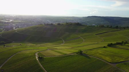 piemonte : vineyard hill fly from above by drone. Sunset aerial shot from green countryside. slow cinematic drone move for landscape video Vídeos