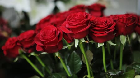 bouquets : Amazing bouquet of red roses.