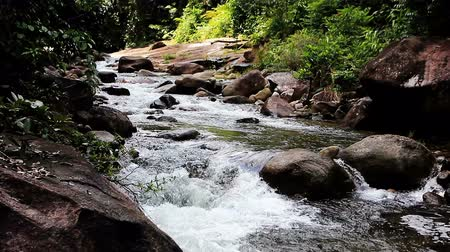 ribeiro : Rive with rock in deep forest, South of Thailand