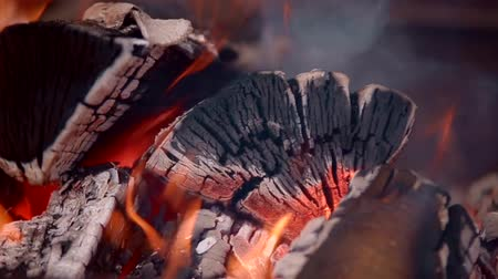 çatırtı : Hot fire wood