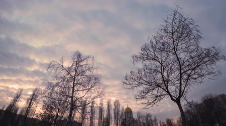 podridão : Sunset in a cloudy sky over the evening city through the branches of autumn bare trees with a church and dwelling houses on the horizon, Time Lapse